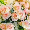 Bougies Florales